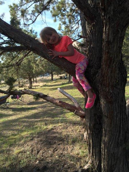 Emma climbed her first tree!