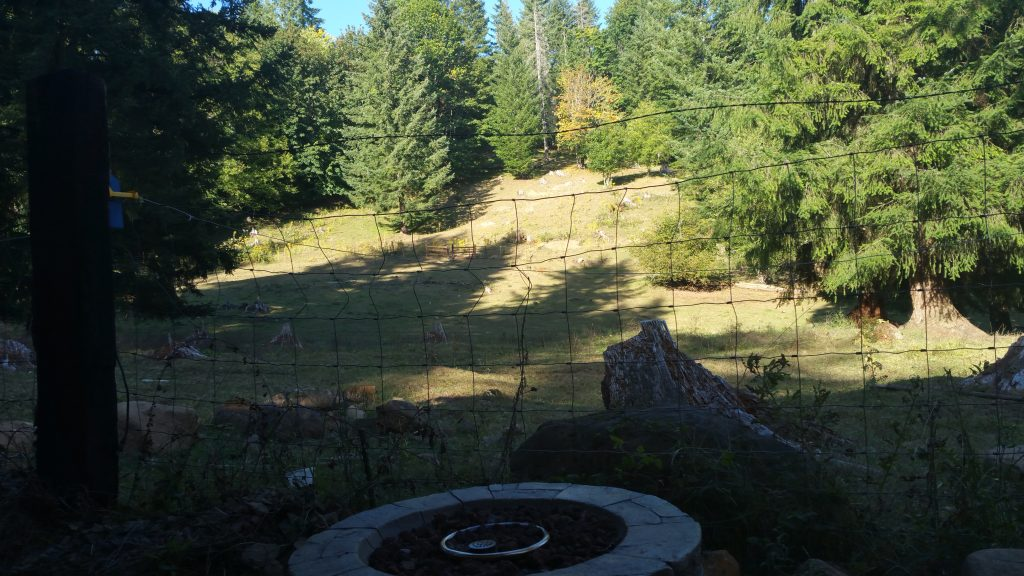 """Fire pit and view from our """"front porch"""""""