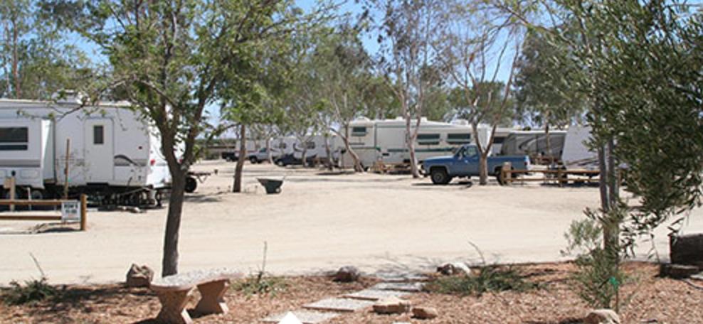 Lost Hills RV Park
